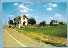 Theuville (28) Rosay-au-Val 2 Scans Sur La Ligne De Chartres à Orléans 18-05-2004 Cliché Alain Lesaux Autorail - France