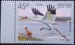 Russia, 2019, Mi. 2654, Europa, Birds, Crane, MNH - 2019