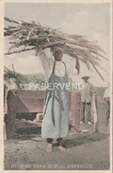 Barbados  Heading Cane To The Mill  Bs195 - Barbades