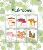 Liberia 2018 Flora - Mushrooms - Liberia