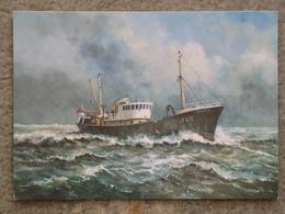 MINCARLO - TRAWLER - Fishing Boats
