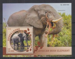 G227. Sierra Leone - MNH - 2016 - Fauna - Wild Animals - Elephants - Bl - Timbres