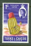Turks & Caicos Is: 1971   QE II - Pictorial - Decimal Currency  SG333    1c    MH - Turcas Y Caicos