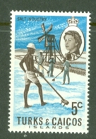 Turks & Caicos Is: 1971   QE II - Pictorial - Decimal Currency  SG337    5c    MH - Turks And Caicos