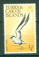 Turks & Caicos Is: 1973   Birds   SG381    ¼c    MNH - Turks- En Caicoseilanden