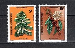 COTE D'IVOIRE N° 383 + 384   NEUFS SANS CHARNIERE COTE 1.00€  AGRICULTURE CAFE - Ivory Coast (1960-...)