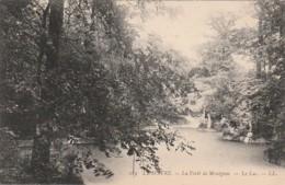 *** 76  ***    LE HAVRE  La Forêt De Montgeon Le Lac - TTB Neuve - Graville