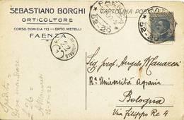 1221 RAVENNA FAENZA BORGHI ORTICOLTORE - Storia Postale