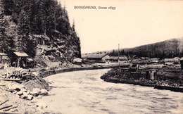 BORGOPRUND / ROMANIA / PRUNDU BÂRGAULUI : VALEA DORNEI - DORNA VÖLGY / DORNA VALLEY ~ 1910 - '915 - RRR ! (ac114) - Rumänien
