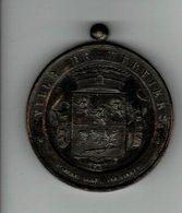 Medaille A Determiner Ville De Verviers Concour Agricole De Dison1899 - Professionals / Firms
