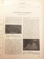URANIA 1947-48  GEBUNDENE JAHRGÄNGE - Zeitungen & Zeitschriften