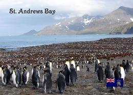 AK Südgeorgien South Georgia St. Andrews Bay New Postcard - Postcards