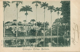 Barbados  Codrington College  P. Used Port Of Spain Trinidad In 1902 - Barbades