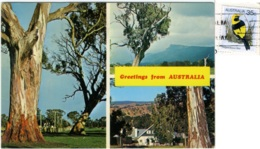 AUSTRALIA  Greetings From..  Multiview  Nice Stamp Bird Theme - Altri