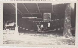 Photographie Originale  Années 40/50 Avion Pou Du Ciel - Aviation
