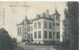 Montaigu - Scherpenheuvel - Le Château - Edit. D. Stalmans-Adriaens - Phototypie Marco Marcovici - 1908 - Scherpenheuvel-Zichem