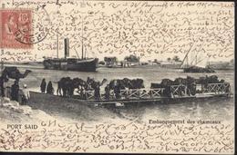 YT Mouchon Retouché Alexandrie N°24 CAD Beyrouth Syrie 28 Mars 1905 Bureau Français à L'étranger CPA Port Saïd Chameaux - Briefe U. Dokumente