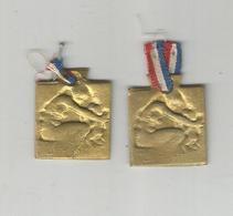2 PETITES MEDAILLES  : ORPHELINAT DES ARMEES , DE R. LALIQUE - 1914-18