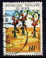 BENIN - 384° - CHAMP DE CACAO - Benin - Dahomey (1960-...)
