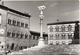SIENA - Particolare Della Piazza Del Duomo - Siena