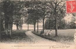 89 St Saint Sauveur L' étang Des Barres Vue Prise Du Parc Du Château Des Gouttes Cachet 1908 - Autres Communes