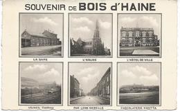 Souvenir De Bois D'Haine Multivue - Manage