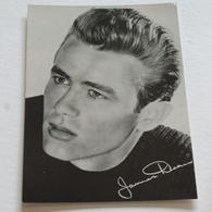 JAMES DEAN  - Photo 21x15 - Photo Warner Bros - Photographs