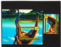 SRO440 VEREINTE NATIONEN UNO GENF 1998 Michl 346 + BLOCK 10 ** Postfrisch - Genf - Büro Der Vereinten Nationen