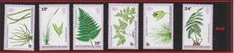 ASCENSION   1980 Ferns And Grasses  ** - Ascension (Ile De L')