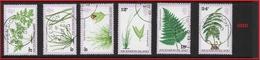 ASCENSION   1980 Ferns And Grasses  USED - Ascension (Ile De L')