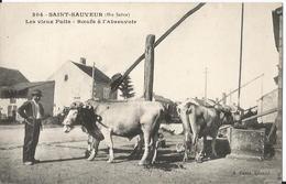 CPA - 70 - Saint Sauveur  - Les Vieux Puits - Boeufs à L' Abreuvoir - Gros Plan - Sonstige Gemeinden