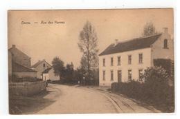 Kanne Canne - Rue Des Pierres 1929 - Riemst