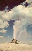 WHITE DOME GEYSER, YELLOWSTONE NATIONAL PARK. U.S.A. POSTAL CPA CIRCA 1960 NON CIRCULÉ - LILHU - Estados Unidos
