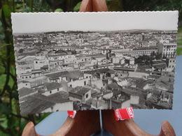 Cpsm JEREZ DE LA FRONTERA Vue Partielle Cadiz Vista Parcial - Espagne