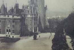 Antoing Château Princes Charles De Lignes - Antoing