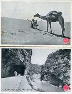 ALGERIE(PUBLICITE BISCUITS OLIBET) LOT DE 4 CARTES - Algeria