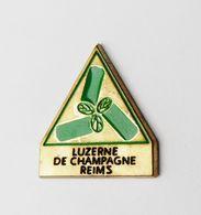 Pin's Luzerne De Champagne Reims - 46R - Autres