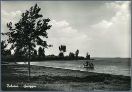 °°° Cartolina N. 135 Bolsena Spiaggia Nuova °°° - Viterbo