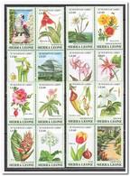 Sierra Leone 1991, Postfris MNH, Botanic Gardens, Flowers - Sierra Leone (1961-...)