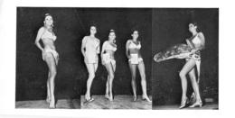 PHOTO FEMMES  CULTURISME CULTURISTE FORMAT 24 X 12 CM - Sports