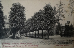 Scherpenheuvel - Montaigu // Sortie Du Chemin Du Rosaire - Uitgang Van Den Rozenkransweg 19?? - Scherpenheuvel-Zichem