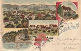 Gruss Aus Schönenberg - ZH Zurich