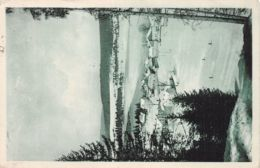 25-MALBUISSON-N°2245-D/0259 - France