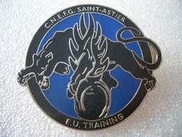 Insigne Gendarmerie - Polizia