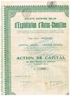 Titre Ancien - Société Anonyme Belge D'Exploitation D'Auto-Chenilles - Titre De 1927 - Automobile