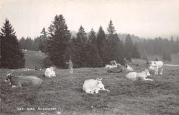 39-JURA PATURAGE-N°2253-H/0011 - Autres Communes