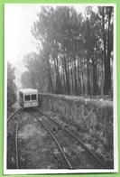 Viana Do Castelo - REAL PHOTO - Elevador De Santa Luzia - Train - Tramway - Viana Do Castelo