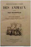 1856 GRANDVILLE Jean Jacques - SCÉNES DE LA VIE PRIVÉE ET PUBLIQUE DES ANIMAUX - 1850 - 1899