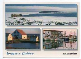 CPM GRAND FORMAT - IMAGES DU QUÉBEC - Gaspé
