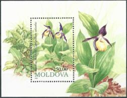 MOLDAWIEN 1993 Mi-Nr. Block 4 ** MNH - Moldawien (Moldau)